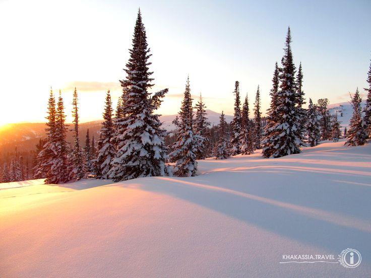 Beautiful winter.  Photo: Pavel Churakov