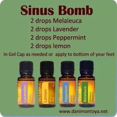 doterra sinus bomb - Google Search