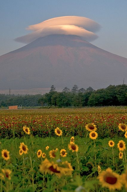 Mt.Fuji with Umbrella cloud, Yamanashi, Japan