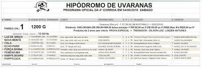 LEANDRO SOARES MACHADO: Jockey Club Pontagrossense 4ª Corrida 2016 04/06/2...