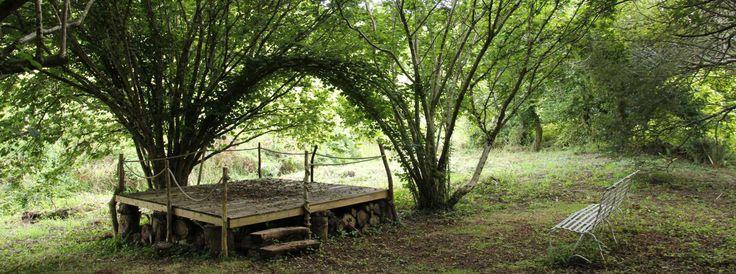 Devon campsite & working farm