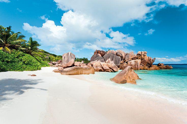 Seychelles. Isole da sogno!
