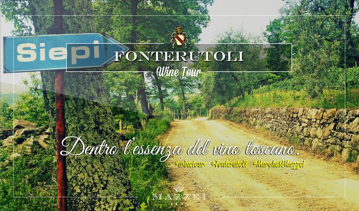 Inside the essence of tuscan wine. For reservations for large groups contact our Enoteca at enoteca@fonterutoli.it @marchesimazzei #winetour #MarchesiMazzei #Fonteurutoli