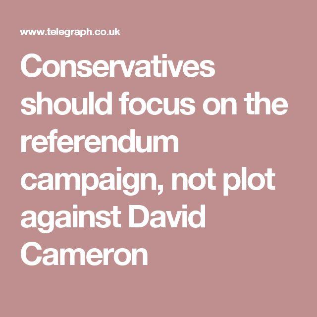 Conservatives should focus on the referendum campaign, not plot against David Cameron
