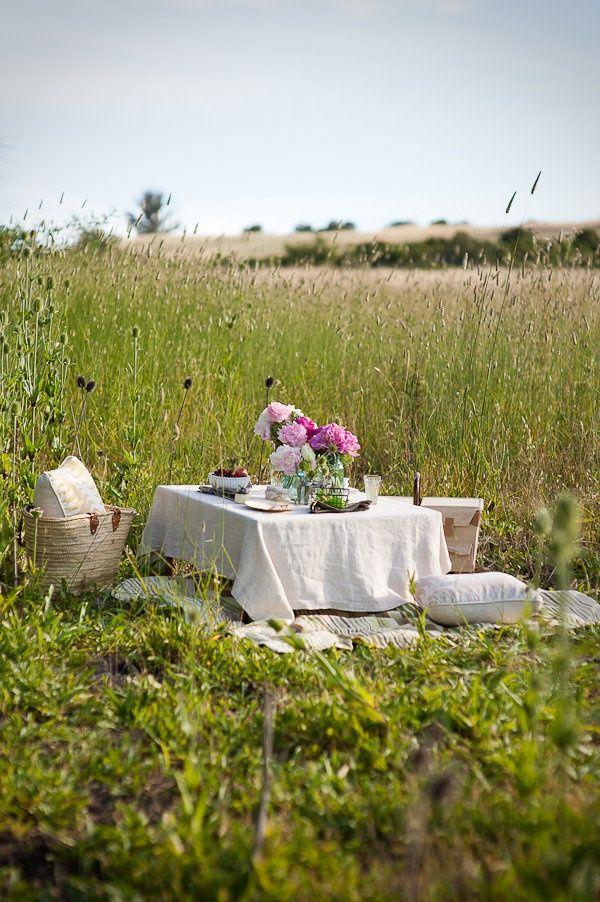 Outdoor picnic.