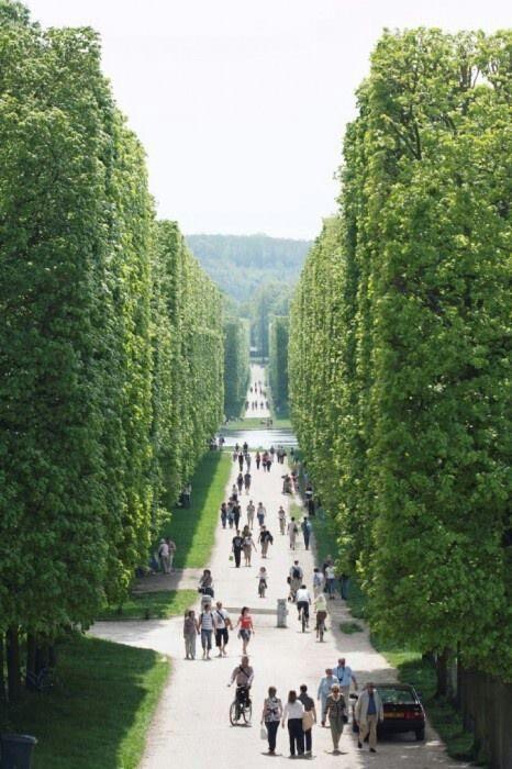 Parc de Versailles, Paris