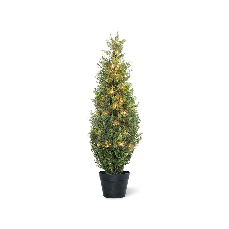 "National Tree Company Pre-Lit 36"" Artificial Arborvitae Plant, Green"