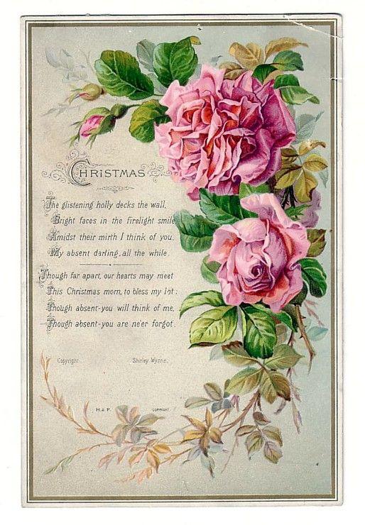 vintage rose post card jpg 422x640