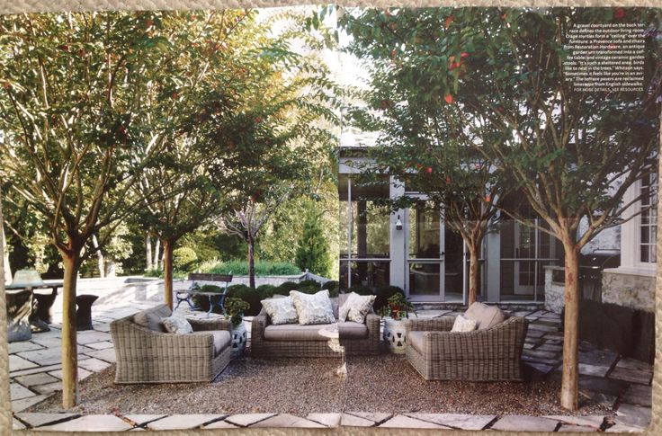 """Gravel Courtyard Crape Myrtles form a """"ceiling"""" over"""