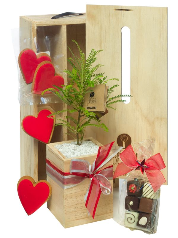 Gorgeous new gifts for Valentines day
