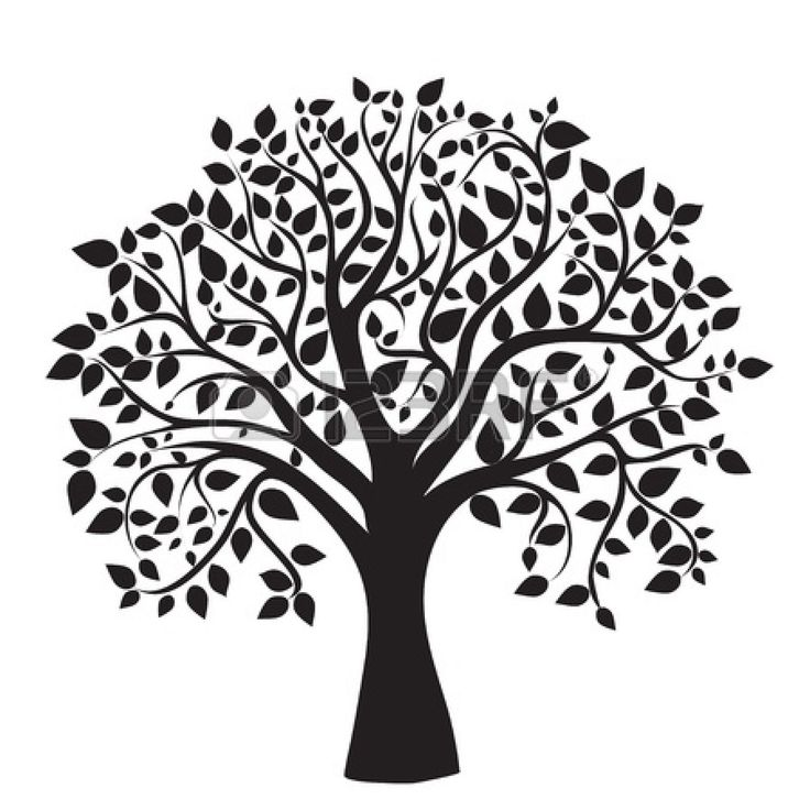 Tree Of Life Images, Stock Pictures, Royalty Free Tree Of Life