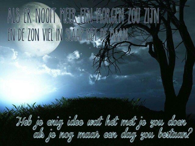 """Als er nooit meer  een  morgen zou zijn en de zon viel in slaap met de maan . Heb  je  enig idee  wat het met je zou doen als je nog maar een dag zou bestaan ?   Uit 'Nooit meer  een  morgen'. Van het album """"De Bestemming """"."""