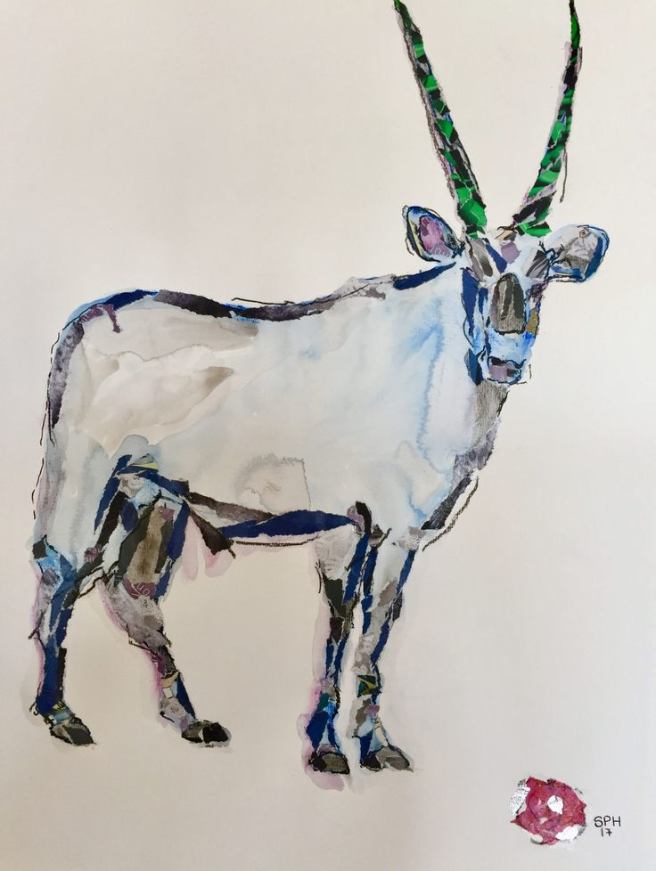 The Strand Gallery presents Crucial: Hilda Kleyn, Susan Proctor Hume, Stephanie Proctor, Richard Hodgson – The Upcoming