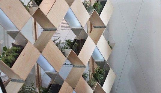 Giardino verticale moderno che funge da parete divisoria in casa
