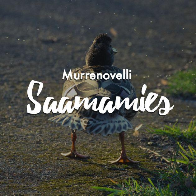 Lue humoristinen murrenovelli, jonka kirjoitin vuoden 2015  Metsällä-kirjoituskilpailuun. Millaista onkaan Oulun seudun murre  kaunokirjallisella twistillä?