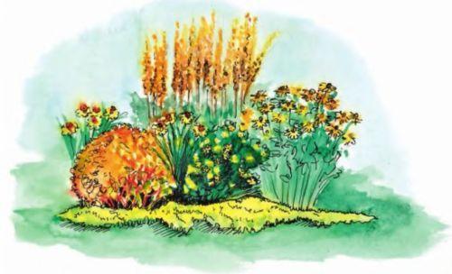Цветочные композиции и цветники для вашего сада
