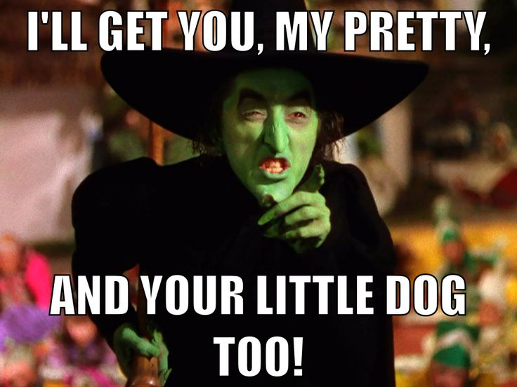 """""""I'll Get You My Pretty, And Your Little Dog Too"""". Wizard of Oz quote"""