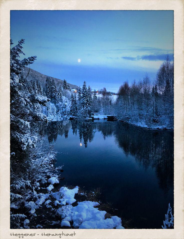 Herangtunet, Heggenes, Nature Norway Winter
