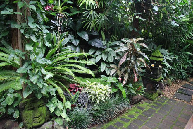 1604 best gardens i like images on pinterest tropical for Garden pool dennis mcclung