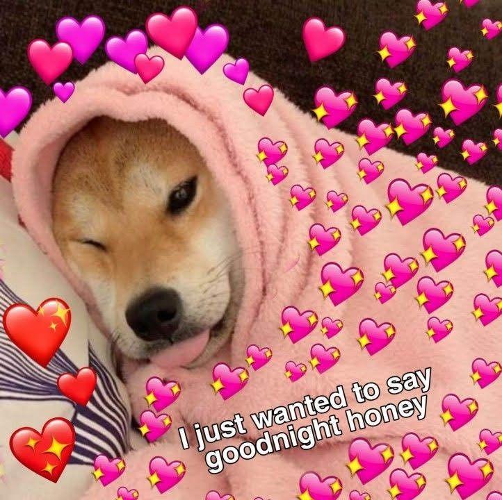 Pin By Daniela Romero On Sru Cute Memes Cute Love Memes Goodnight Cute