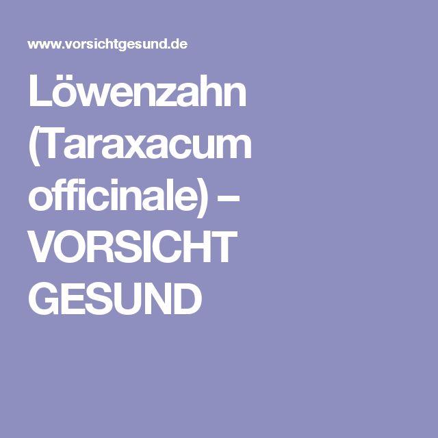 Löwenzahn (Taraxacum officinale) – VORSICHT GESUND