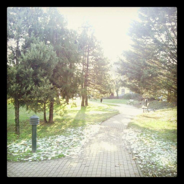 Winter in our Park #aquincumhotel by Eszter F. on Foursquare