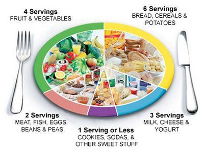 New food pyramid is now easily divided into pie shape wedges...VERY NICE