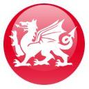 Red Dragon Darts UK