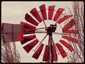 Red Windmill- Windpomp Free State