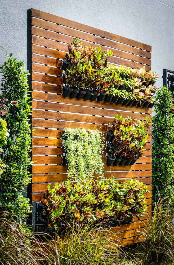 25 Best Ideas About Vertical Garden Wall On Pinterest