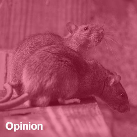 """Opinion: from Chicago's rat problem to transport startups like Bridj and Uber, data is being used to predict behaviour and manage our cities. But the idea of the """"Predictive City"""" should be treated with a healthy dose of scepticism, argues Dan Hill."""