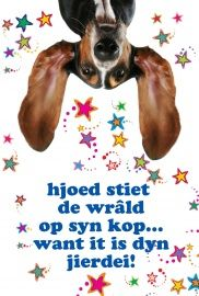 Postkaarten Friese teksten - Vak 113