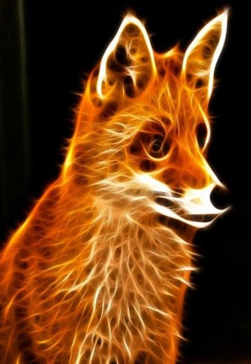 14 best images about cool neon animals on pinterest - Neon animals wallpaper ...