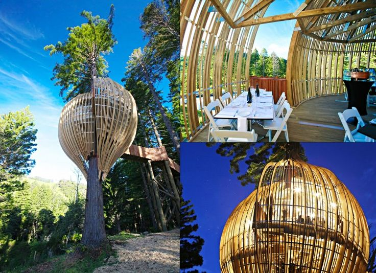 16 Of The Most Unique Restaurants In The World - Yellow Treehouse Cafe, New  Zealand | Over the Rainbow | Pinterest | Unique restaurants, Restaurants  and ...