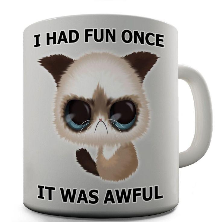 I Had Fun Once Funny Grumpy Cat mugs gifts Tea art friend gift wine milk beer novelty tea cup birthday gifts