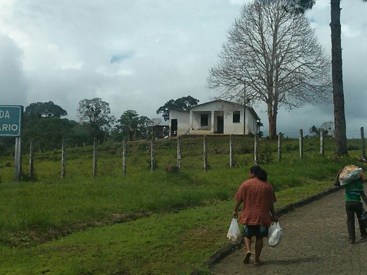 Little house. Ipiau. Bahia. Brasil.