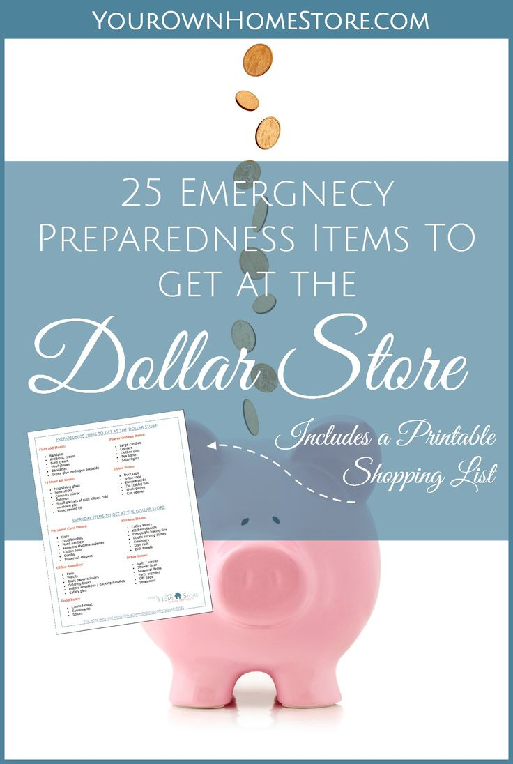 What to buy at the dollar store | Emergency Preparedness on a Budget | 25 Emergency Preparedness Items I get at the dollar store – Plus 30 more | Dollar store preps | How to shop at the dollar store