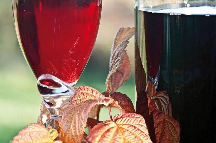 Урожай малины в самом разгаре. Малиновое варенье – это, конечно, супер: и вкусно, и при простуде зимой поможет. Но и домашнее вино из малины лечит, я вам скажу, не хуже – причем не только кашель и сопли, но и горечь слез, и раннюю боль потерь. Если не упустить время и приготовить малиновое вино сейчас – оно будет готово как раз к первым холодам. В данной статье я расскажу вам несколько рецептов малинового вина и поделюсь пока небольшим, зато своим опытом его изготовления.  Малина – продукт…