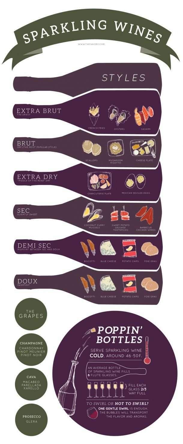 Sparkling Wine Styles Infographic