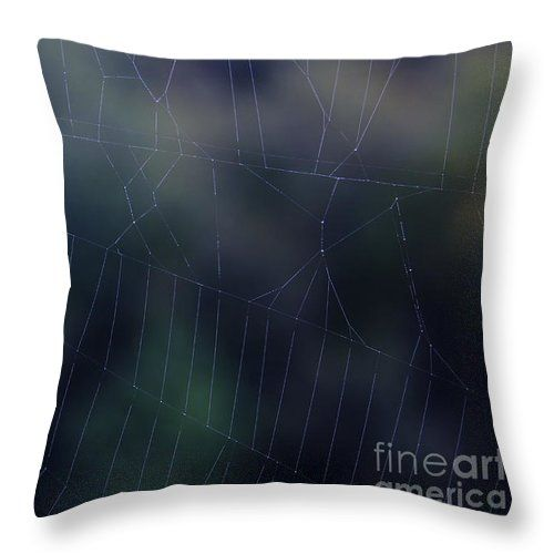 Evening Web Throw Pillow by Sverre Andreas Fekjan.  Our throw pillows are made…