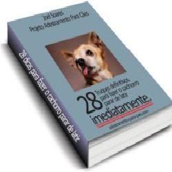 Aprendendo mais sobre os cães: 28 Truques definitivos para fazer o cachorro parar...