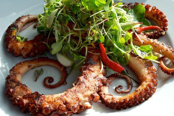 Recept: Grilovaná chobotnica | Nebíčko v papuľke