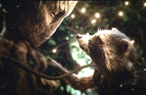 I mean, just look how cute he is with Rocket | Community Post: 18 Reasons Groot Would Be The Perfect Boyfriend