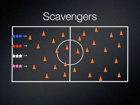 Scavengers-Good Warm Up game - use with nutrition cards & fruits & veggies
