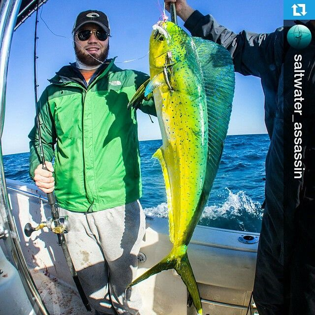 112 best images about offshore fishing on pinterest for Best saltwater fishing times