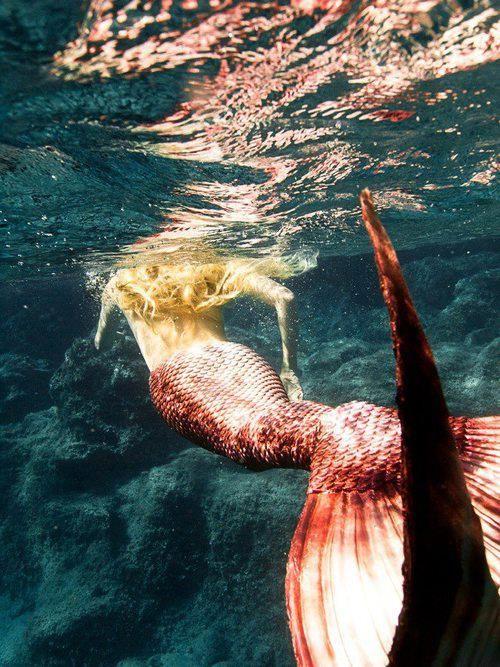 LifeStyle mermaid