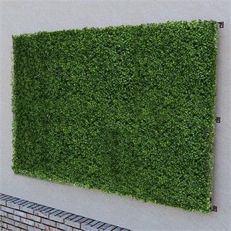 Faux boxwood wall store | Artificial Living Wall and Privacy Screen 96in. x 48in.