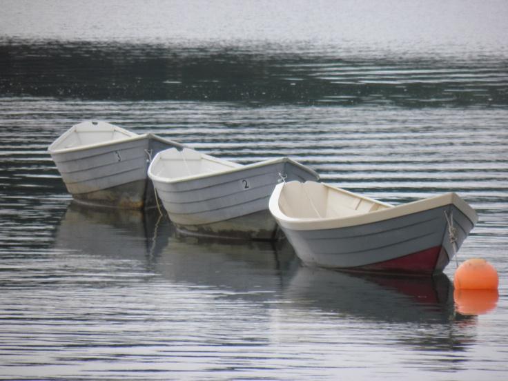Boats Row Boats
