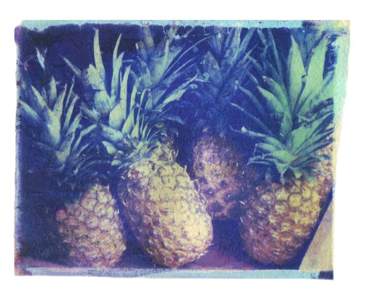 "Saatchi Art Artist: Matthew Schwartz; Polaroid 2013 Photography ""Pineapples"""