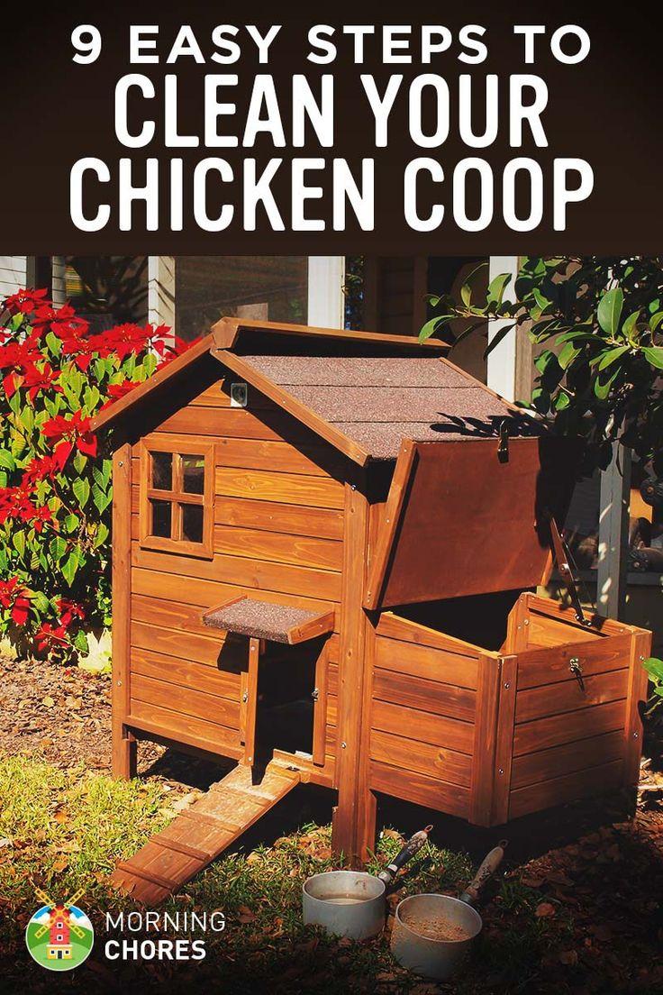 311 best chicken chillin u0027 images on pinterest backyard chickens
